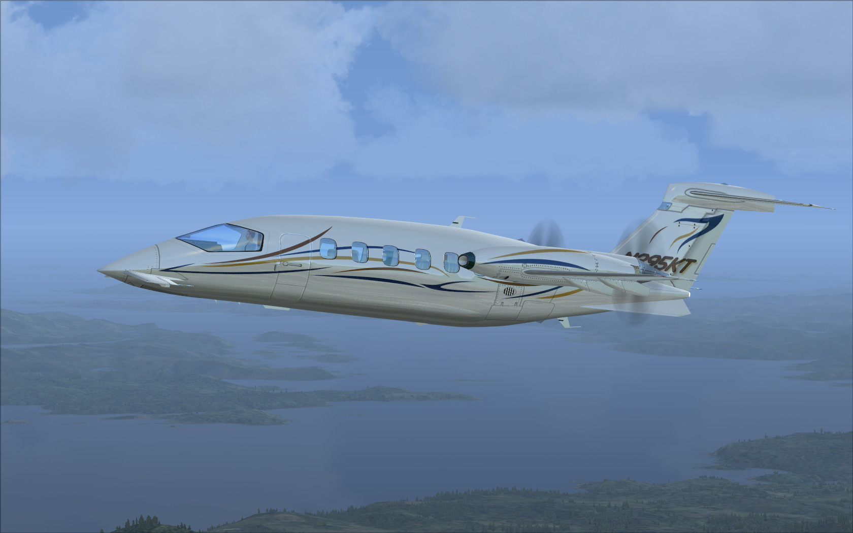 Piaggio P-180  img14